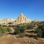 capitol-reef-june-2012-8